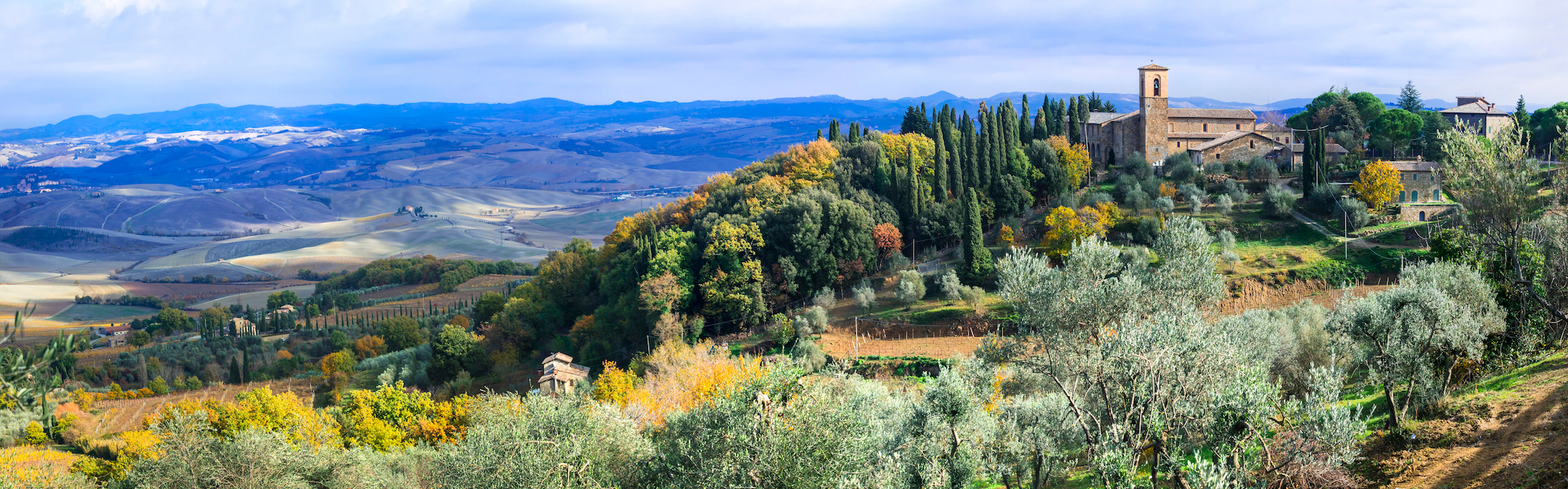 The Best Vintages Of Brunello di Montalcino To Add To Your Cellar